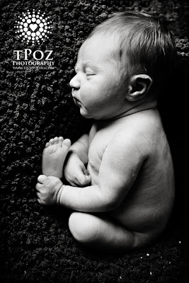 Crofton Newborn Photography