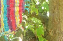 Tissage sur une branche