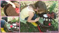 Comment faire un jardin féérique