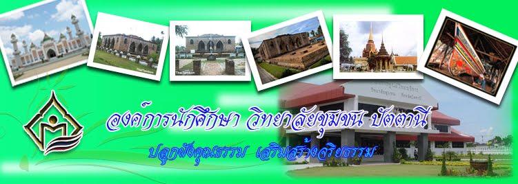 องค์การนักศึกษา วิทยาลัยชุมชน ปัตตานี