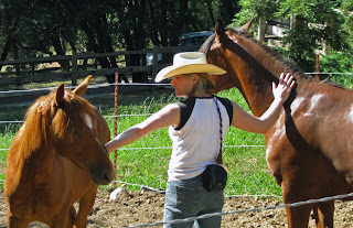 Jess and two Slide colts