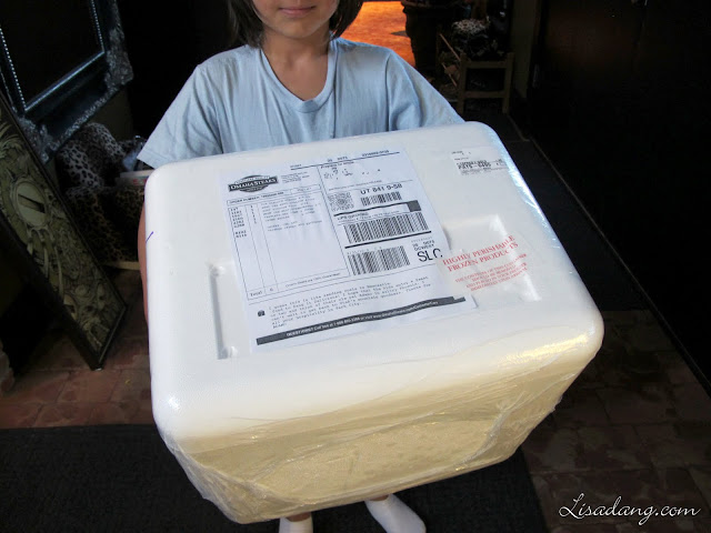 Dang It Delicious Omaha Steaks Shipping Cooler Arrives