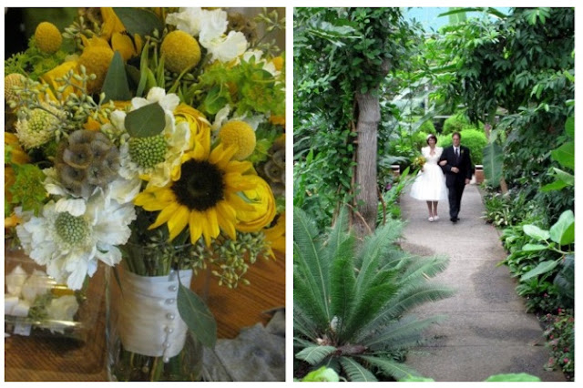 Congratulations Lauren and Eric, Loved creating your Bouquet and Boutonnieres this fall and seeing all your great photos what a unique wedding! Lauren and Eric were married on September 11th at the University of Michigan Matthaei Botanical Gardens in Ann Arbor.  The brides bouquet features sunflowers, white scabiosa, yellow ranunculus, seeded eucalyptus, scabiosa pods, and craspedia.  Sweet Pea Floral Design Florist WEdding Bride Bouquet Ann Arbor Flowers Florist