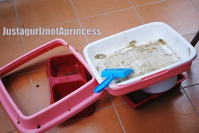 tempat pasir kucing, bekas makanan & bekas air