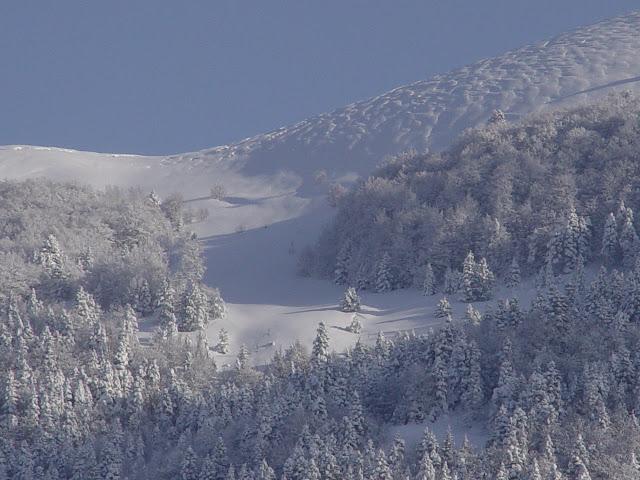 Χιονοδρομικό Κέντρο Σέλι..