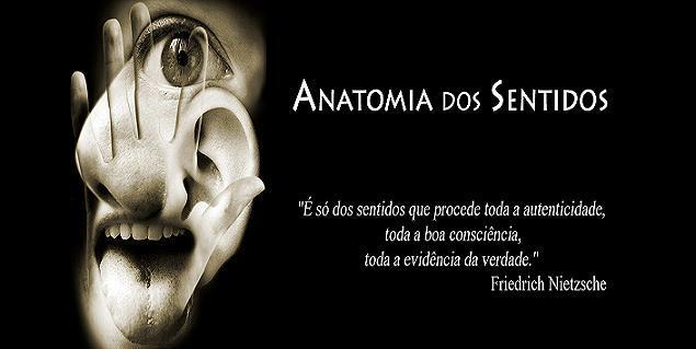 Anatomia dos Sentidos
