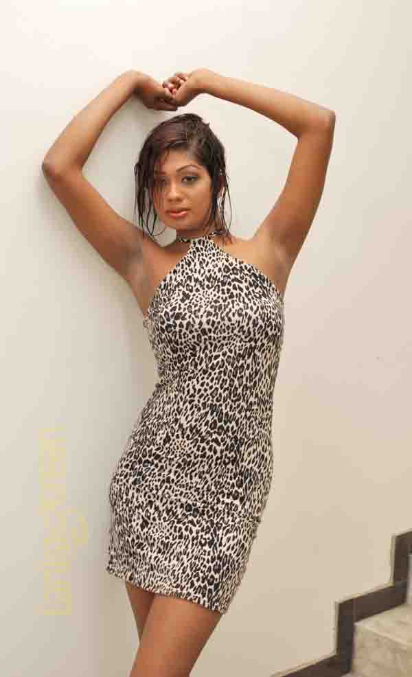 actressbooks sri lankan very hot up ing model   dinusha indoor