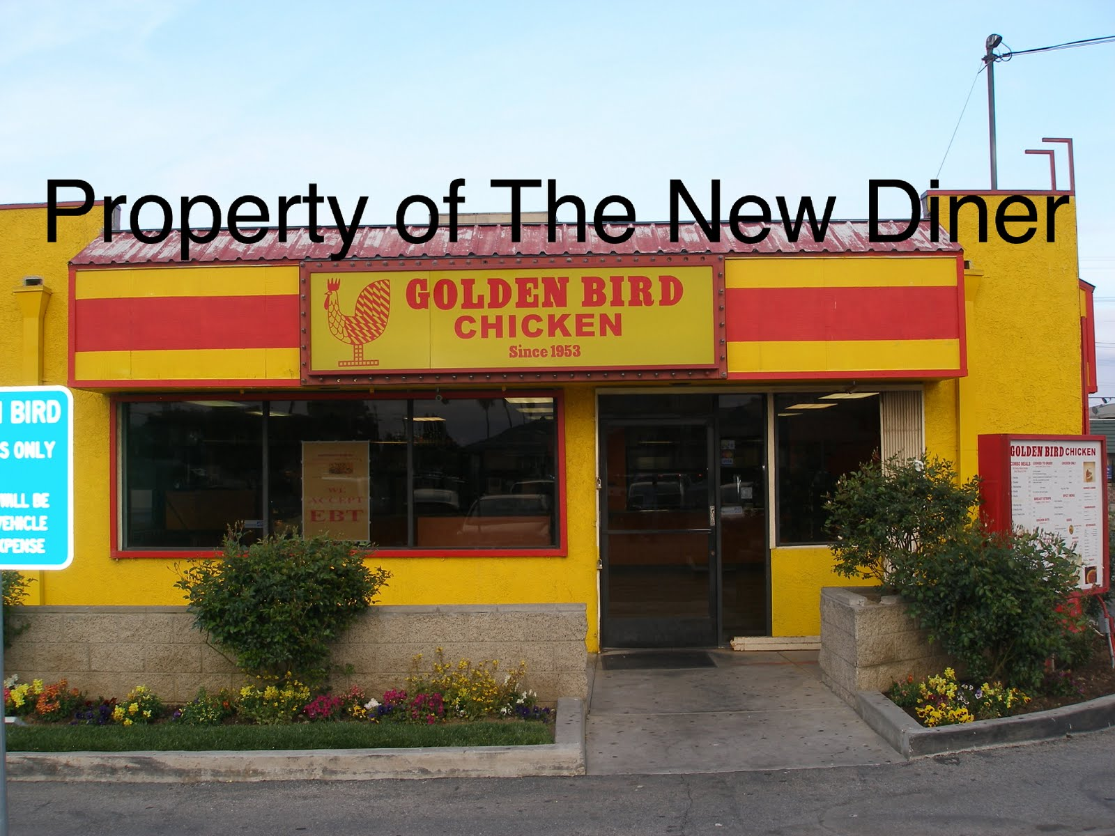 the golden bird The golden bird 71 likes let's fly with the wings of positive energy & meditation.