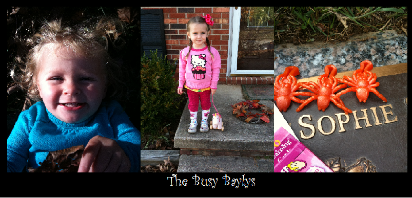The Busy Baylys