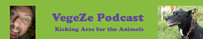 VegeZe podcast