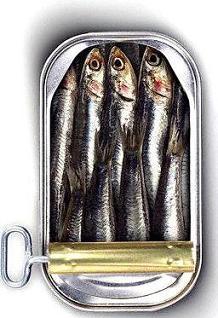 [sardinhas.jpg]