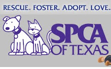 We support the SPCA!