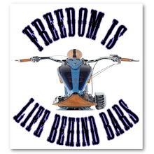Freedom is Life Behind Bars