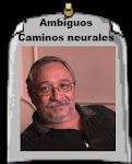 Ambiguos caminos neurales