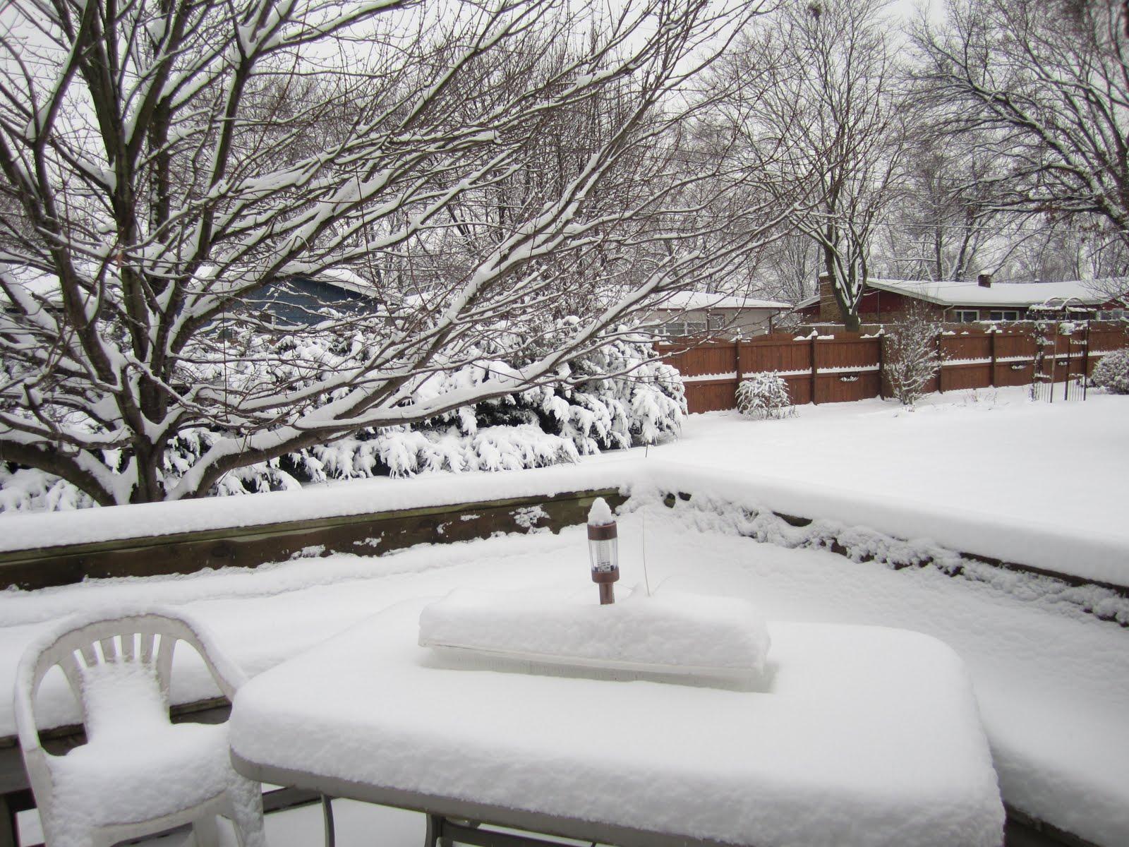 http://1.bp.blogspot.com/_VeGi-XrsuB8/TPqYfGFk_8I/AAAAAAAAE6U/3iDjJNQwNwY/s1600/SnowyDayDec10%2B008.jpg
