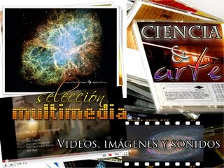 Selección Multimedia