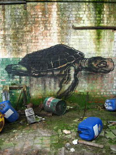 turtle graffiti design
