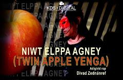 Twin Apple Yenga