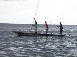 In un mare di foto