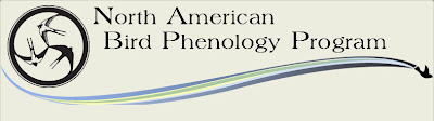 North American Bird Phenology Program