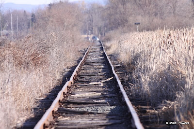 Railroad Tracks through Horseheads Marsh