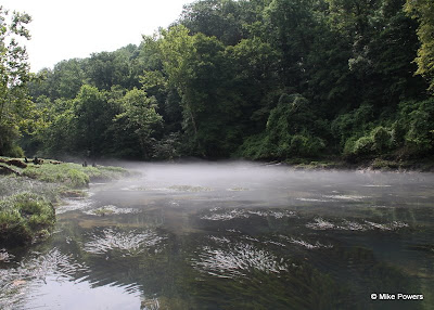 Morning on the Little Red River