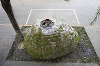 Оригинальный дом в форме яйца