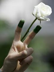 Giugno 2009: La rivoluzione di velluto in Iran