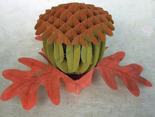 sliceform acorn