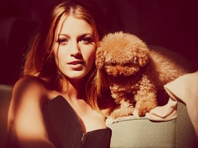 Blake Lively is a happy owner of a charming red-haired little girl - Maltese and Poodle mix, named Penny. Though once the beloved dog put her in an unpleasant situation before the paparazzi when she pissed directly on Blake's dress.