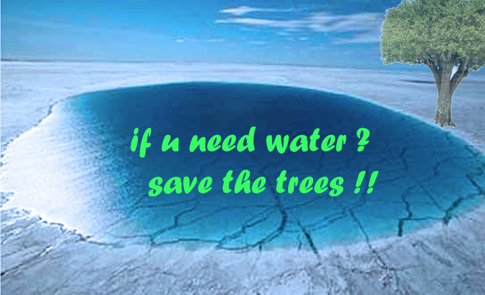 water may exist with the last tree