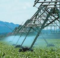 irrigação em cristalina