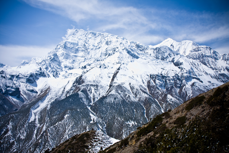 encounters in the himalayas - photo #41