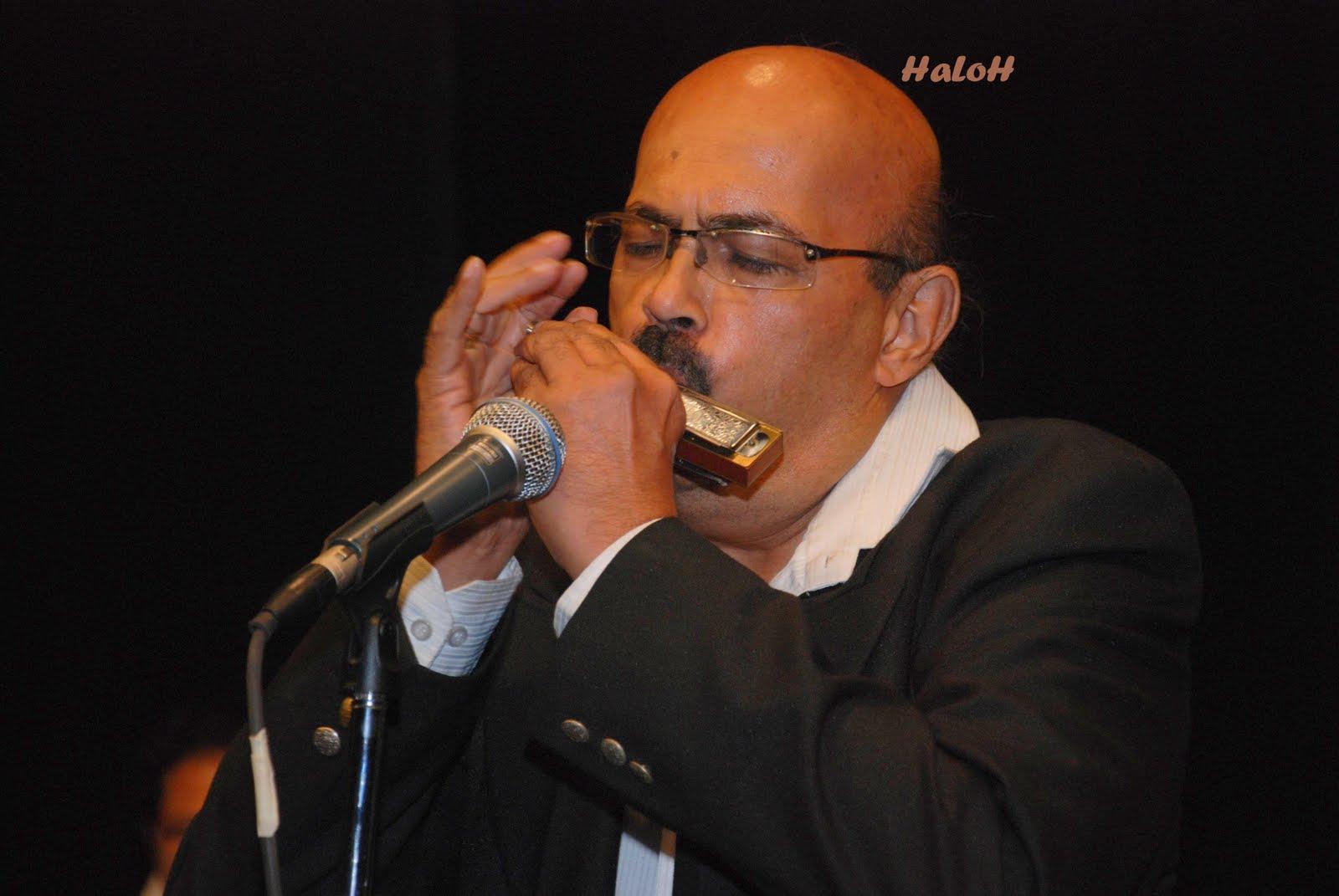 wiki how to play harmonica