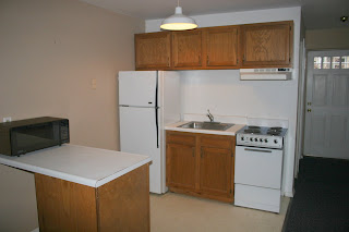 Studio Apartment Kitchens