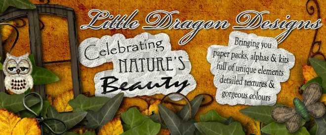 Little Dragon Designs