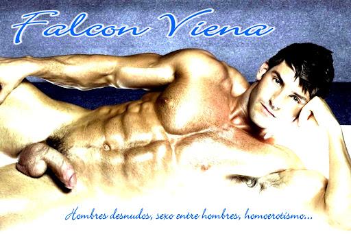 #Falcon Viena#