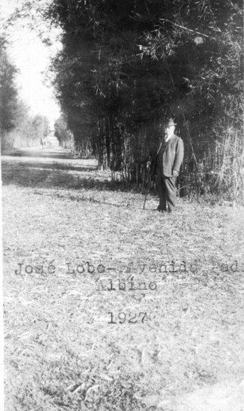 Avenida  josé Lobo (1927)