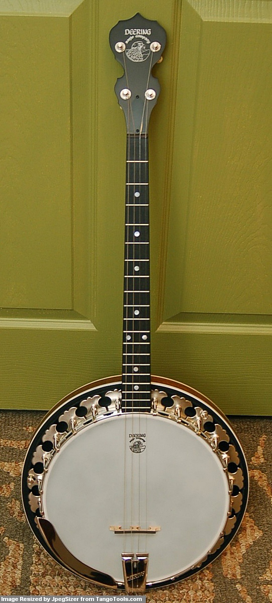 Bouzouki GDAE: Deering Boston Tenor Banjo