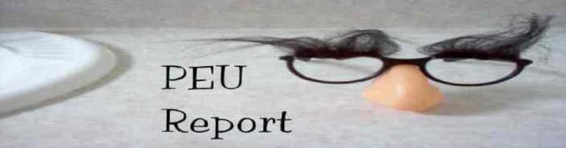 PEU Report