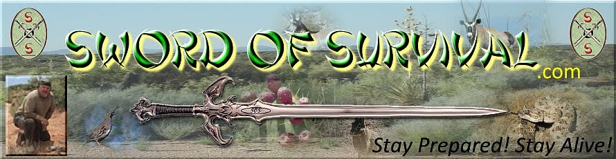 Sword Of Survival