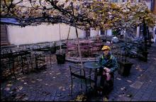 jardin ciudad Oporto