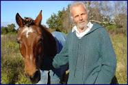 Equine Acupuncturist