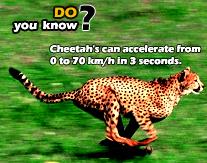 Tahukah Anda 5