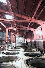 Pabrik Pengolahan Keraginan di Fillipina