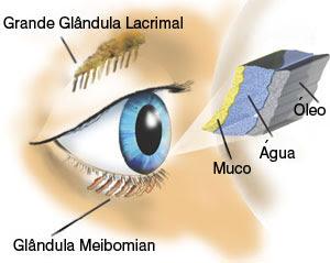 Como é formado o olho seco