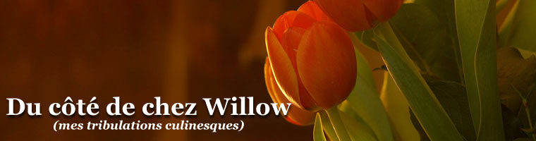 Du ct de chez Willow