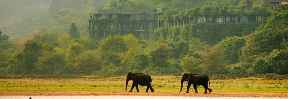 Sri Lanka A Beautiful Country Beautiful Places Of Srilanka