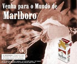 Empresas tabagistas.....