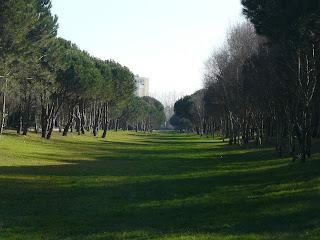 Parque da Cidade, Porto